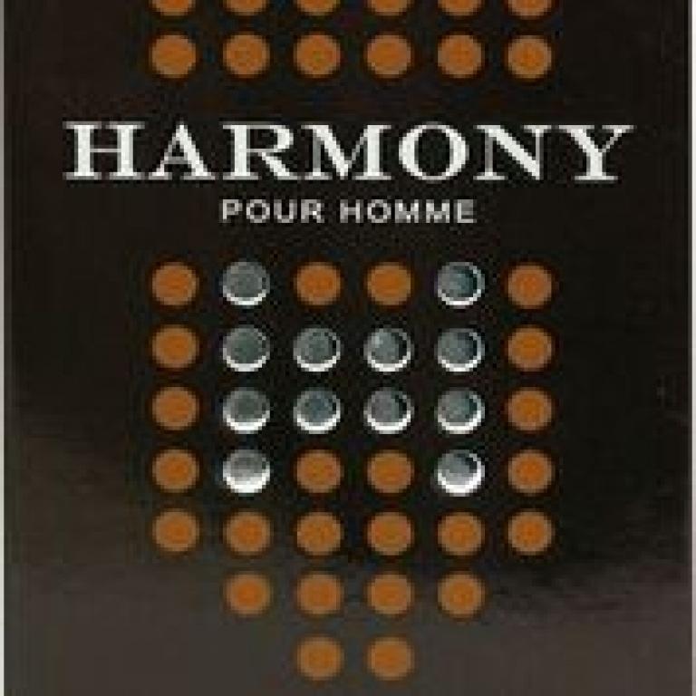 PERFUME 100ML IN STYLE HARMONY