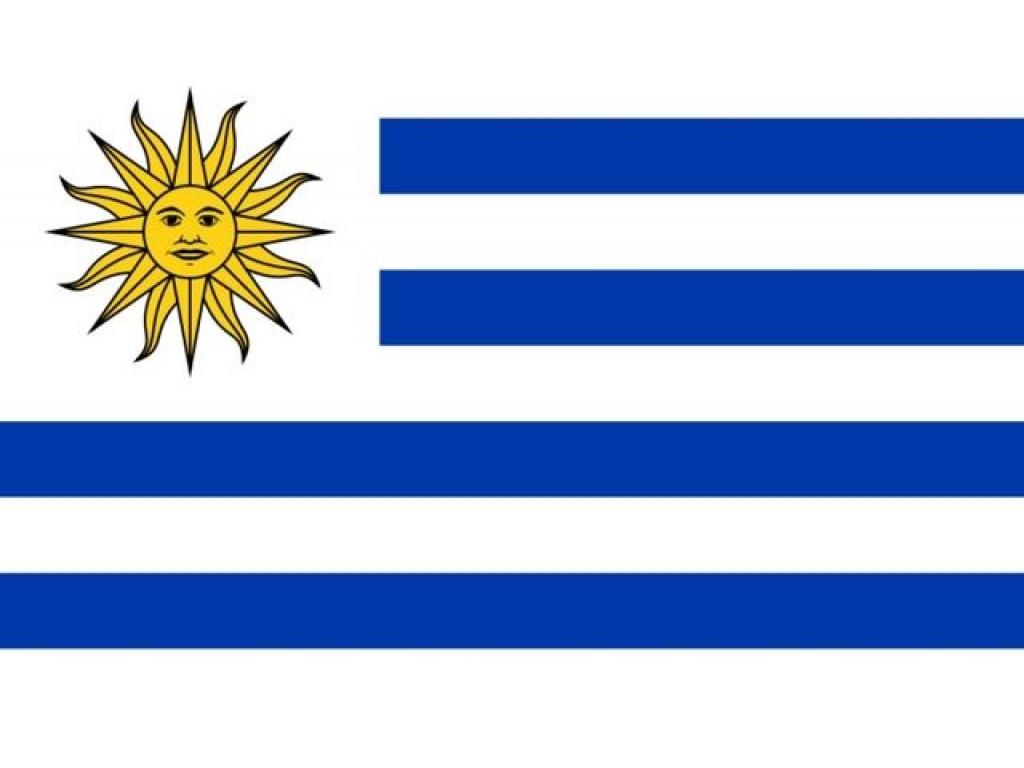 Bandera Uruguay  Chica    60 X 90